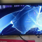 Empat anak kucing mati direndam kanak-kanak, TV plasma pun pernah pecah